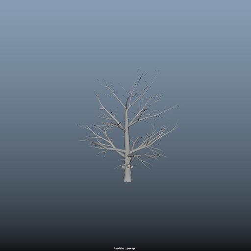 trees_39