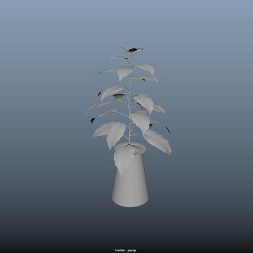 trees_40