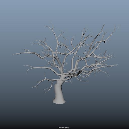 trees_43